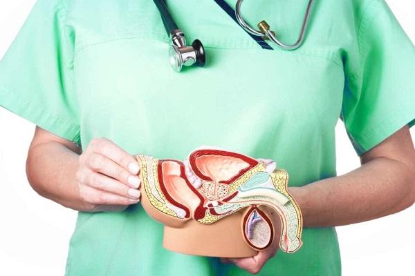 изменения в тканях предстательной железы