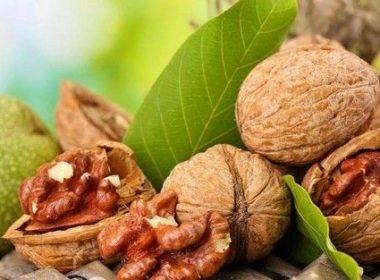 Как использовать грецкий орех при лечении простатита
