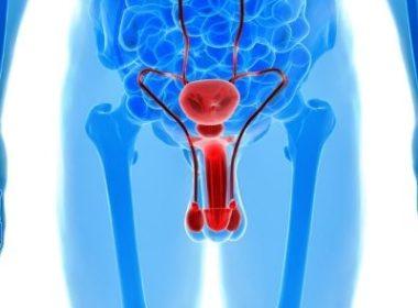 Первые признаки простатита у мужчин