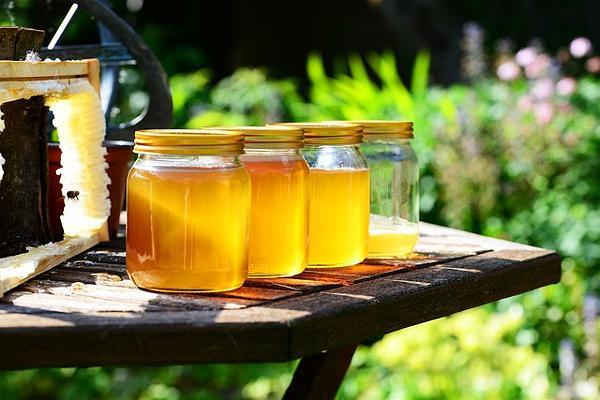 лечение простатита медом