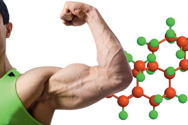 как восстановить тестостерон